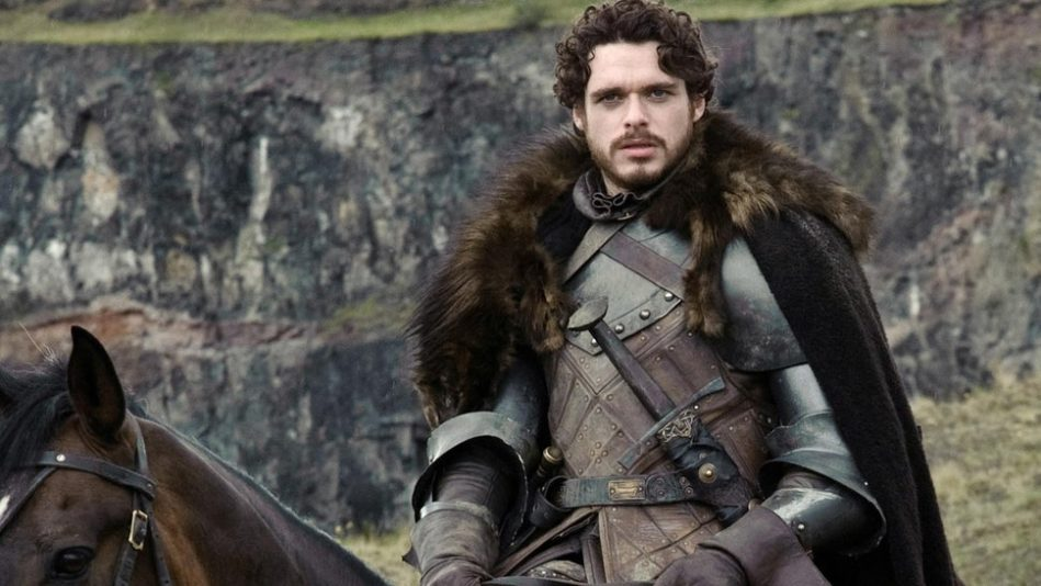 robb stark king in the north